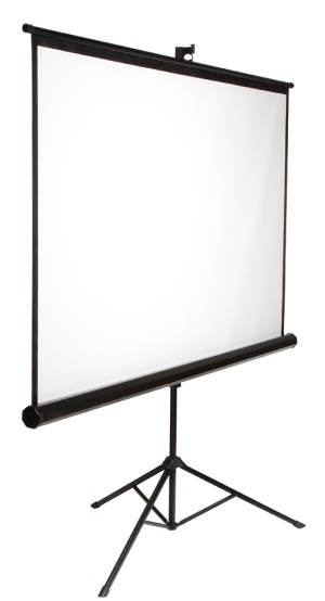 Where to find 100  PROJECTION SCREEN - LOCH TS100 in Ventura