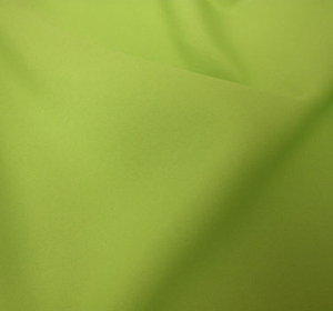 Where to find POLYESTER LINEN, LIME in Ventura