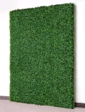 Rental store for 4  WIDE X 8  TALL GREEN HEDGE WALL in Ventura CA